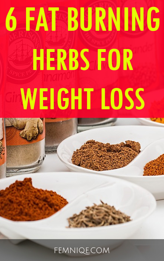 6 Fat Burning Natural Herbs For Weight Loss - Femniqe