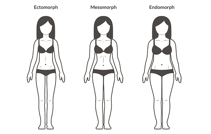 female body types ectomorph