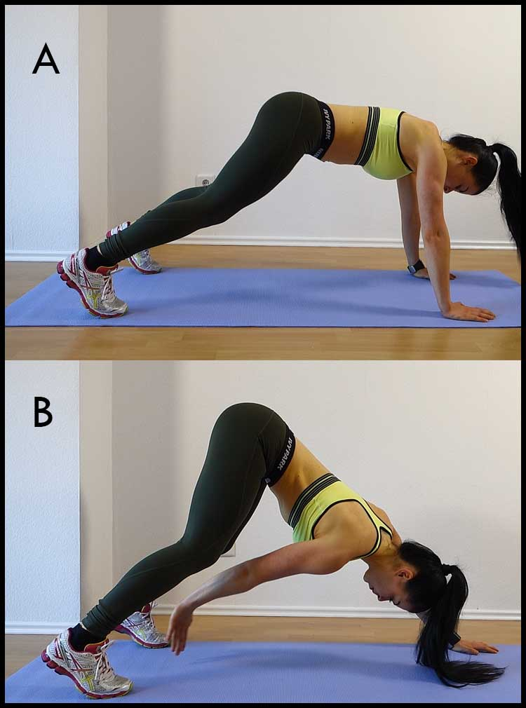 PLANK WORKOUT FOR BELLY FAT