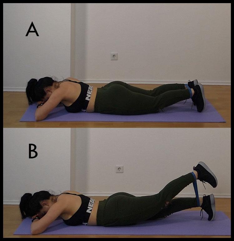gluteus maximus exercises
